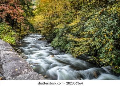Great Smoky Mountains National Park - Stream near Cades Cove  - Gatlinburg Pigeon Forge TN