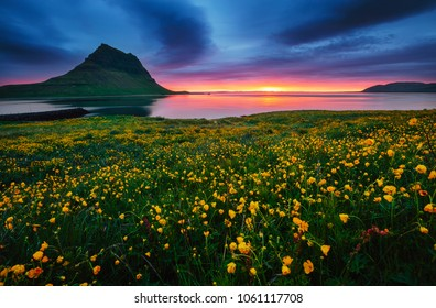 Great sunrise over the Atlantic ocean. Location Iceland, Europe. Dramatic image of beautiful nature landscape. Amazing view of most popularly photographed place. Discover the beauty of earth.