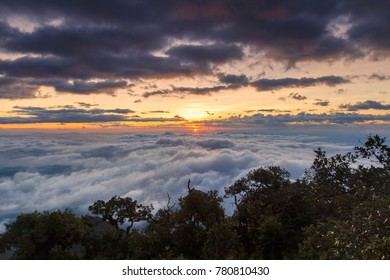Great view of the foggy at Doi Luang Chiang Dao, High mountain in Chiang Mai Province, Thailand
