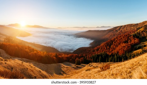 A great view of the hills glowing by sunlight at twilight. Dramatic and picturesque morning scene. Location place: Carpathian, Ukraine, Europe. Artistic picture. Beauty world. Warm toning effect.