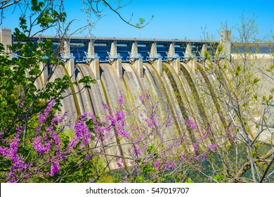 A great view of Table Rock Dam through some spring flowers