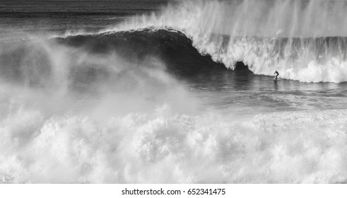 Great waves for little surfers, Little great surfer.