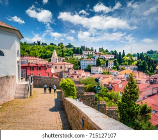 Greatmorning view of old town Piran. Splendid spring morning on Adriatic Sea. Beautiful cityscape of Slovenia, Europe. Traveling concept background. Magnificent Mediterranean landscape.