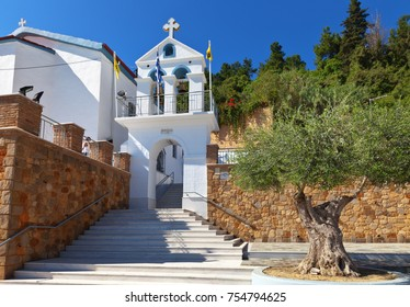 Greece. Old olive tree at the entrance to the church of St. Nicholas in the port town of Katakolon (Olympia)