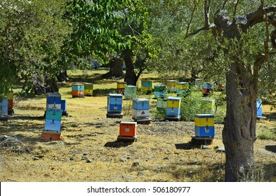 Greece, Samothrace, boxes for beekeeping