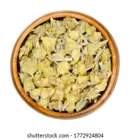 Greek mountain tea in wooden bowl. Also known as ironwort, Sideritis or shepherds tea. Dried flowering plants used as herbal medicine and tea.Closeup from above, over white, isolated macro food photo.