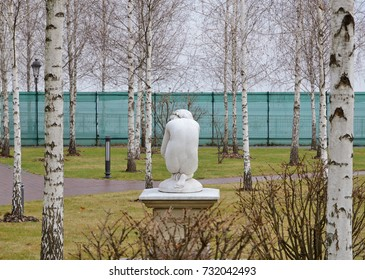 The Greek nude female statue is photographed among the white bare birch trees in the autumn garden.