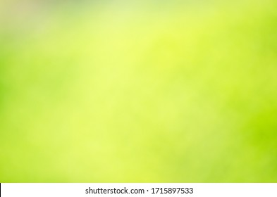 green abstract background with soft transitions