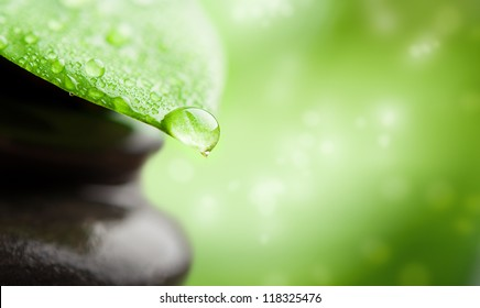 green abstract background  spa with leaf and water drop