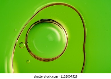 green abstract shape of irregular curves, inside the shape of a circle of green color