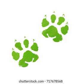 Green animal footprint with green leaf texture