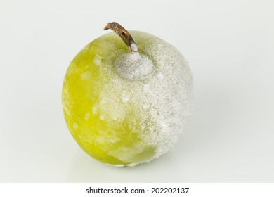 Green apple  in ice on a frost - Stock Image macro.