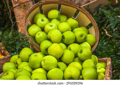Green apples ina bushel surrounded by fresh greens.