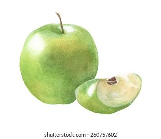 Green apples. Watercolor illustration.
