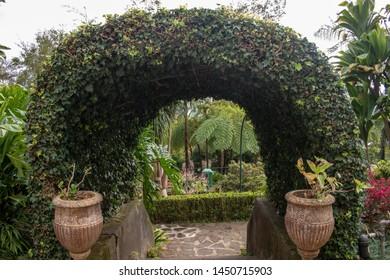 green arch tropical garden Madeira Portugal