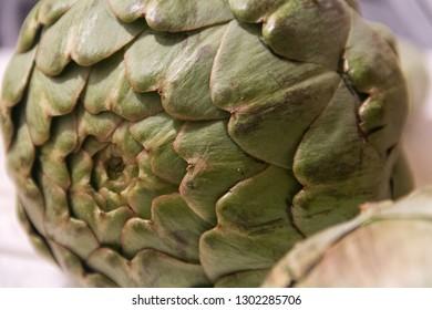 green artichoke vegetable