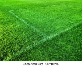 green artificial grass turf stadium with white line, sport summer background