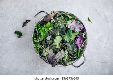 Green baby kale leaves in white colander on gray stone background. Ingredient for healthy vegetarian or vegan smoothie, salads or pesto sauce