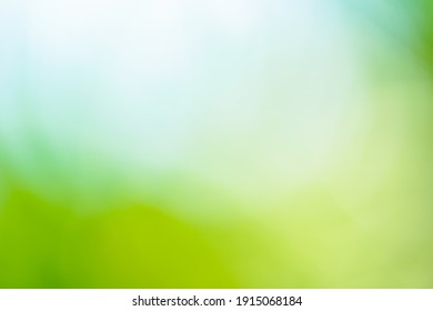 green background nature texture wallpaper colorful bubble