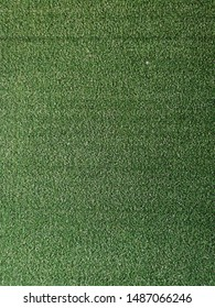 Green background which is old artificial turf.
