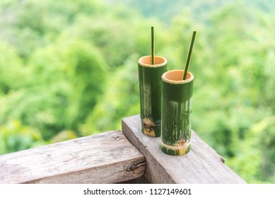Green bamboo cylinder coffee cup, nature product from bamboo, with mountain view background. Ban Na Ton Chan, Sukhothai, Thailand.