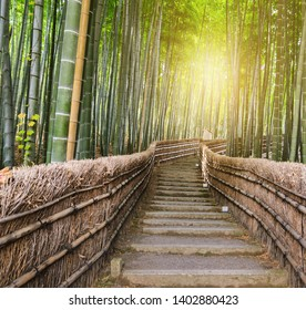 Green Bamboo Forest with steps leading up in Arashiyama,  Kyoto, Japan