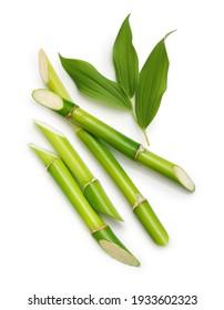 Grüner Bambus mit Blättern einzeln auf weißem Hintergrund