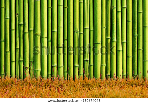 Green Bamboo Wall Green Grass Stock Photo (Edit Now) 150674048