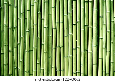 Green bamboo wood wall background texture