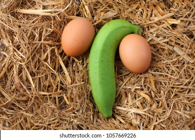 green banana with 2 eggs.placed on dry grass.Symbols to the penis or male organs. concept:  Penis size and nourishment and health.Penis measure, man power and potency,