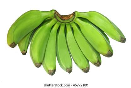 Green banana known as Plantain