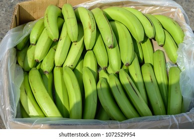 Green bananas in box