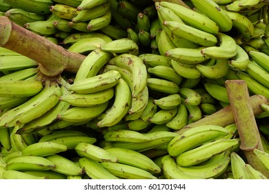 Green bananas. Food category. Background.