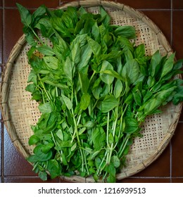 Green Basil Branches arranged in Straw Sieve