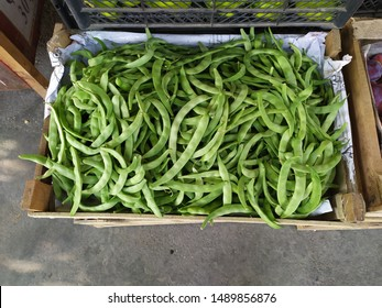 Green beans read for retailhttps://goo.gl/search/Definition+of+retail retail, noun, ˈriːteɪl, sale of goods to public for use or consumption rather than for resale https://goo.gl/search/Definitio sale