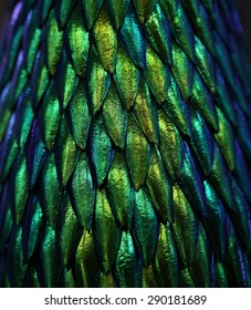 green beetle wing background, crystal, Chrysocolla mineral , fashion cloth accessory ,jewelry