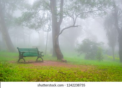 A green bench for sitting in a park on a very foggy day amazing atmosphere at Nandi Hills in Bangalore