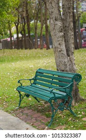 Green bench under the tree on green grass ground