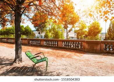 Green bench under the tree in Tuileries Garden in Paris, France. Autumn landscape