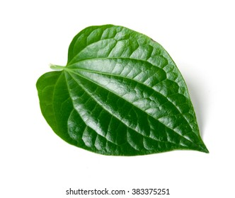 Green betel leaf heart shape isolated on white background
