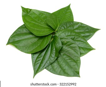 Green betel leaf isolated on the white background