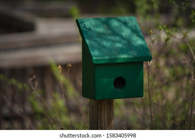 Green bird house in the woods of Cherokee, North Carolina, USA.
