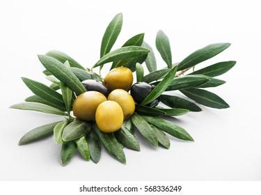 green and black olives still life picture on an olives' leaf base