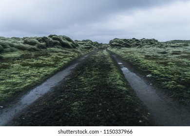 A green and black road through dark green moss fields on a dark moody day taken from a low angle with a dark green foreground and a cloudy sky in the background leading to nowhere in Iceland
