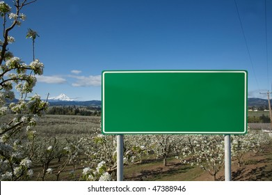 Green blank sign against nature And apple tree blossom
