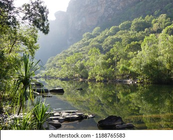 Green, blossoming trees and smooth rocks reflecting in the calm water of Jimjim Creek by Jimjim Falls in Kakadu National Park, Northern Territory, Australia