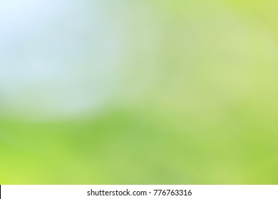 green blurred background, Ecology concept, Nature backdrop.