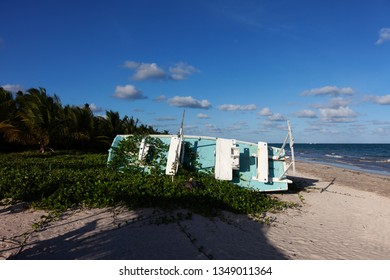Green boat with vegetation on sand at São Miguel dos Milagres, Alagoas, Brazil. A beach called Toque (praia do toque). Fantastic landscape, great beach with clear water. Paradise beach, blue sky.