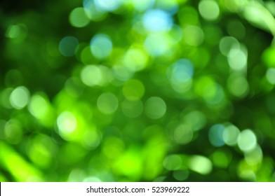 Green bokeh.
