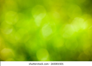 Green bokeh background. Element of design. Abstract eco green blurred background.